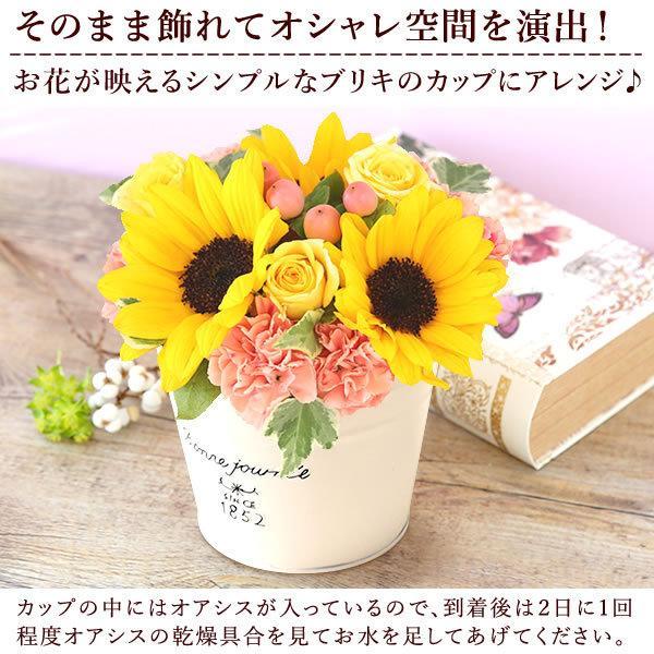 父の日 ギフト 花 セット 和菓子 バウムクーヘン スイーツ 生花 フラワーアレンジメント|hana-collabo|08