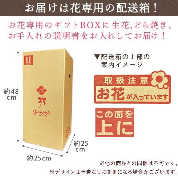 母の日ギフト  花 カーネーション 鉢植え プレゼントランキング  花とスイーツセット 花束 |hana-collabo|15