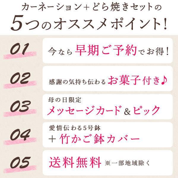 母の日ギフト  花 カーネーション 鉢植え プレゼントランキング  花とスイーツセット 花束 |hana-collabo|04