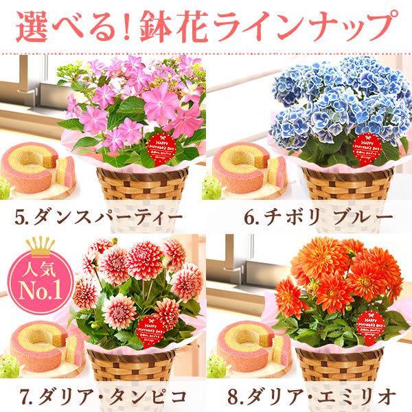 母の日 ギフト 2019 mothersday フラワーギフト 鉢植え 花 お菓子|hana-collabo|03