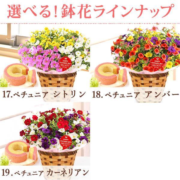 母の日 ギフト 2019 mothersday フラワーギフト 鉢植え 花 お菓子|hana-collabo|06