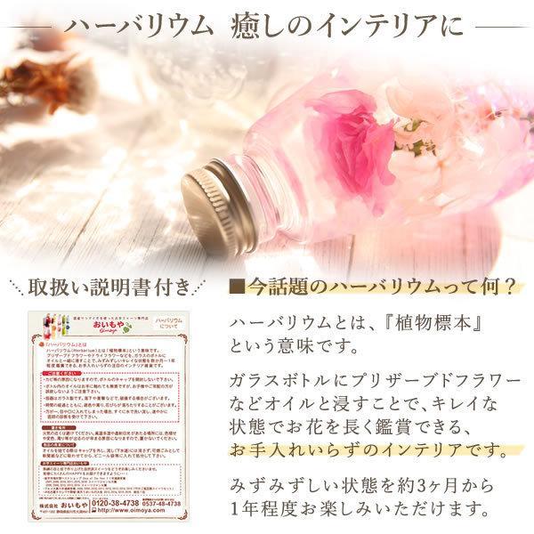 母の日 花 ギフト 2019 mothersday ハーバリウム カーネーション hana-collabo 03