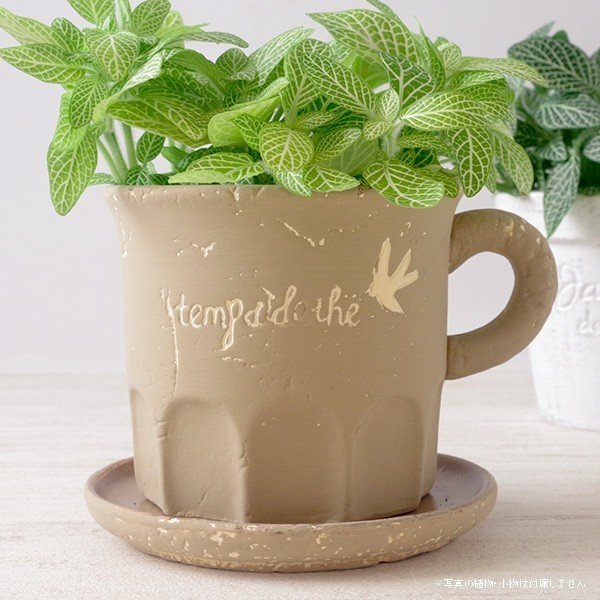 プランター おしゃれ 植木鉢 カッププランター カフェブラウン 3.5号|hana-kazaru