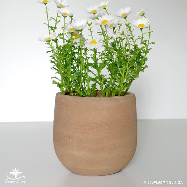 プランター おしゃれ 植木鉢 素焼きのナチュラルプランター POT S 4.5号|hana-kazaru|02