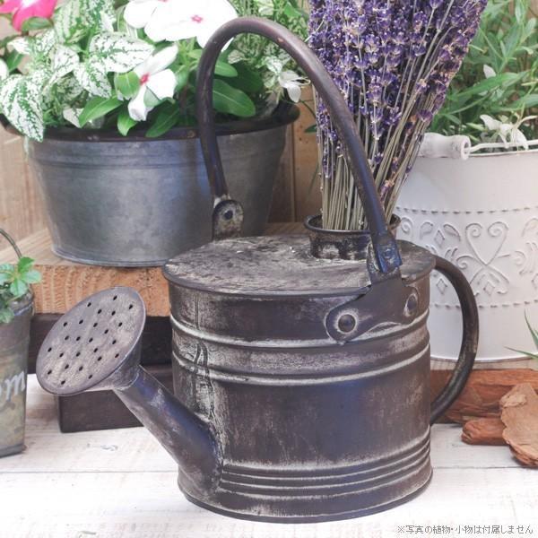 花瓶 ガーデンオブジェ ブリキのデコジョウロ|hana-kazaru