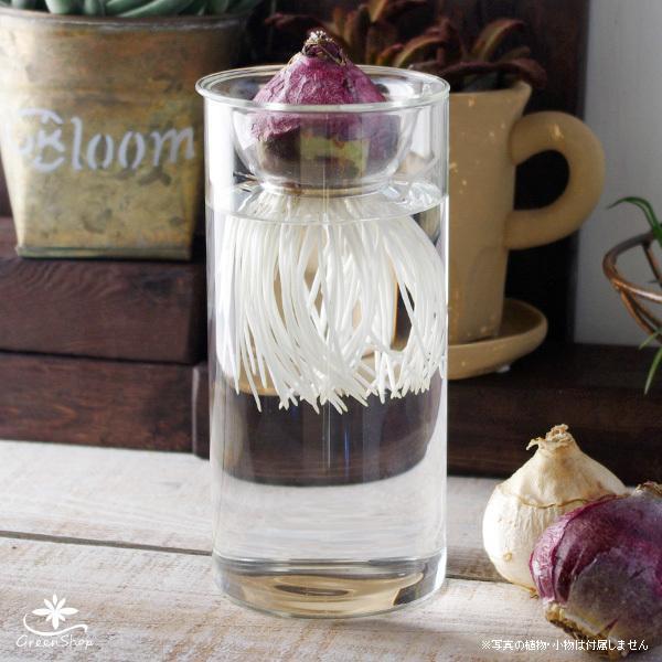 フラワーベース 花瓶 水栽培 ガラス バルブベース|hana-kazaru|02