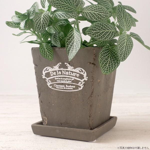 プランター おしゃれ 植木鉢 素焼きのアンティーク風スクエアプランター ブラウン 3.5号|hana-kazaru