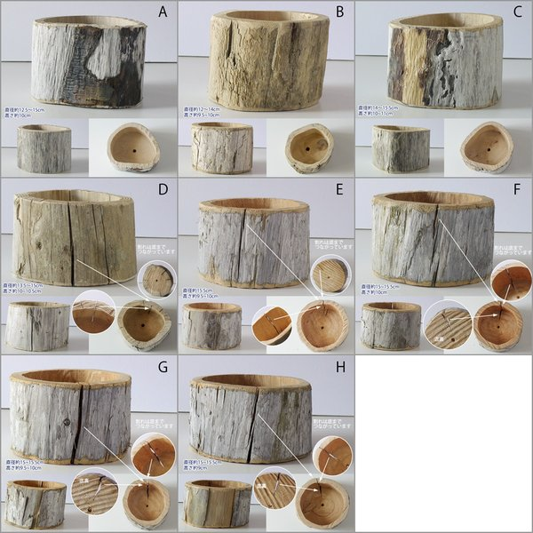 プランター おしゃれ 植木鉢 木製 流木フラワーポット 縦 BIG hana-kazaru 10