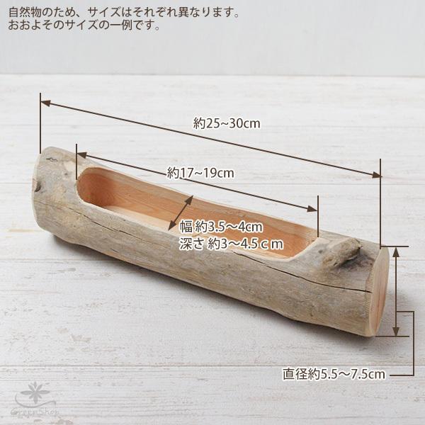 プランター おしゃれ 植木鉢 木製 流木フラワーポット 横長|hana-kazaru|09