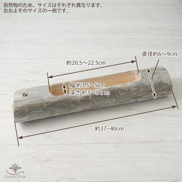 プランター おしゃれ 植木鉢 木製 流木フラワーポット 横長ロング|hana-kazaru|09