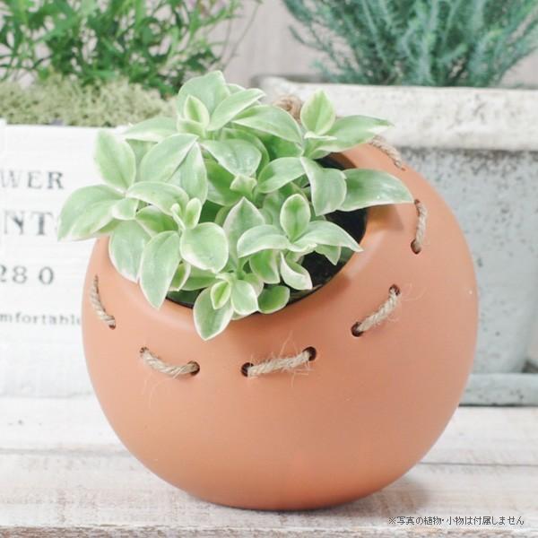 プランター おしゃれ 植木鉢 陶器 まんまるプランター 変形約4号|hana-kazaru