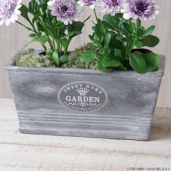 プランター おしゃれ 植木鉢 セメント鉢 スイートホームガーデンレクトポット 約W20.5×D11.5×H9.5cm|hana-kazaru