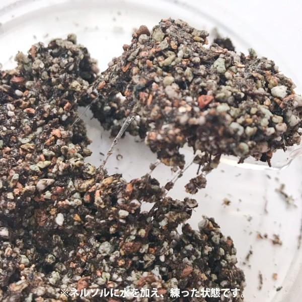 園芸用土 培養土 水で練って固まる園芸用培養土 ネルソルNELSOL 1L|hana-kazaru|05