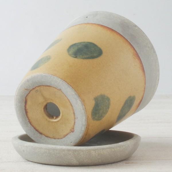 プランター おしゃれ 植木鉢 信楽焼 パロットポット水玉 黄 約3号|hana-kazaru|05