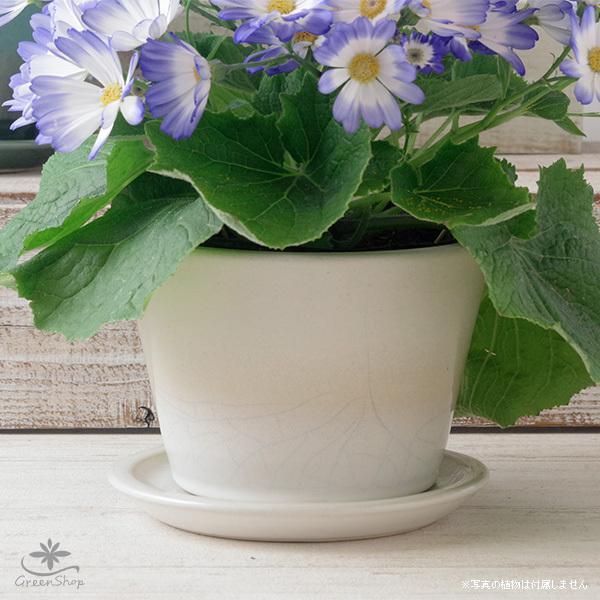 プランター おしゃれ 植木鉢 信楽焼 ルフトミドル 白 約5号|hana-kazaru