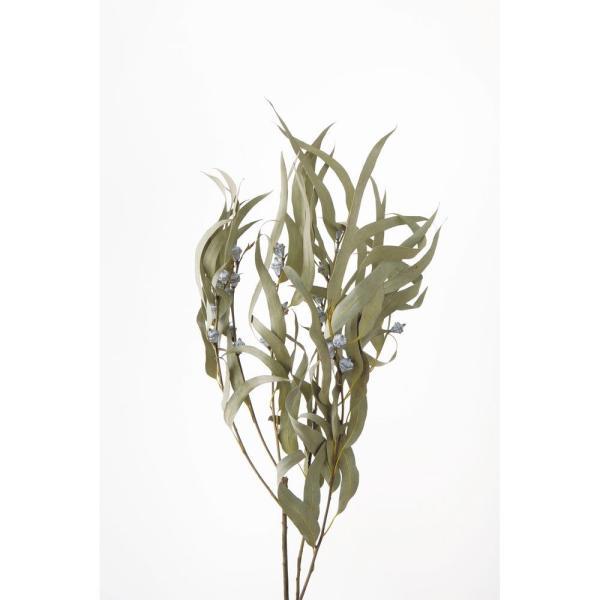 即日 ドライ 大地農園 ユーカリ グロボラス 葉付 約70g N 40235-000 ドライ葉物 葉物