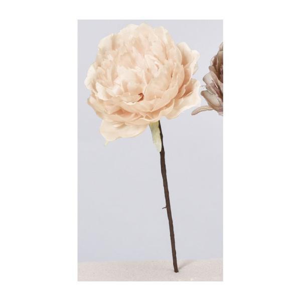造花 アスカ ピオニーピック #008 ベージュ A-33806-8 造花 花材「さ行」 シャクヤク ボタン ピオニー