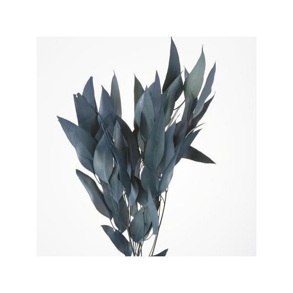 即日 ドライ 小分け 大地農園 ウィローユーカリ ブルーグリーン 約1 3束  16100-760 ドライ葉物 葉物