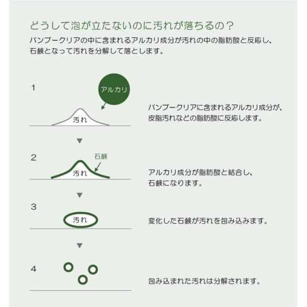バンブークリア 100ml お試しサイズ  竹 国産|hanafu|05