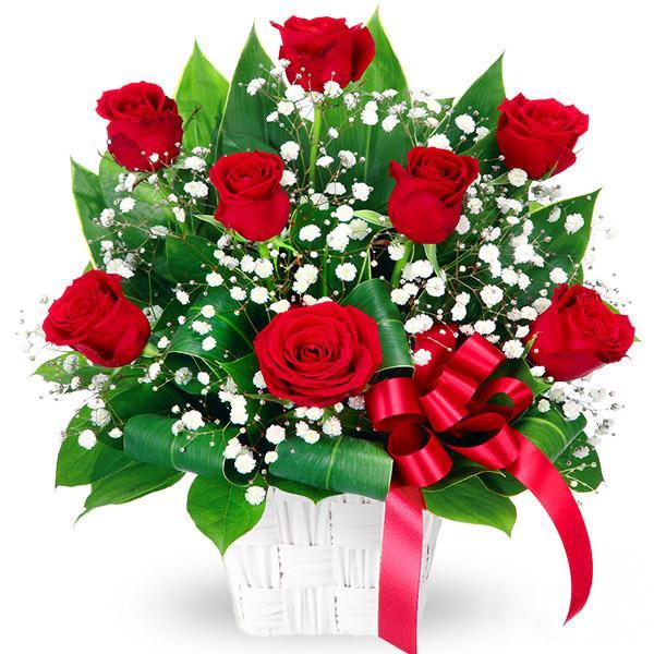 アレンジメント - 511764(赤バラとかすみ草のアレンジメント)通年 花キューピット商品