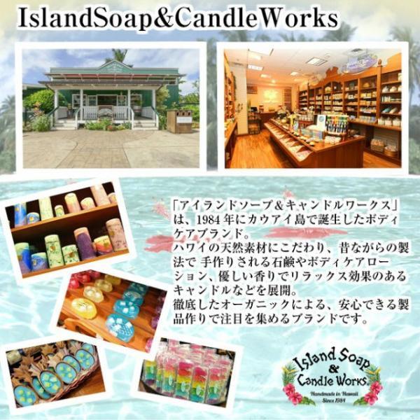 【あすつく 即日発送対応】アイランドソープ ハワイアン トロピカル ローション 2oz 4本セット(ハワイお土産) Island Soap&Candle Works|hanahawaii|03