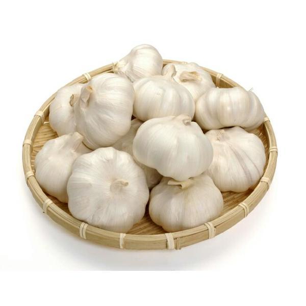 にんにく ホワイト種 球根 300g 中国産 (植え付け時期8月下旬〜11月上旬まで)