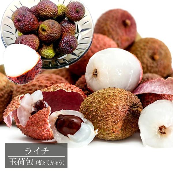 レイシ (ライチ) 玉荷包 ギョッカホウ 取り木 7号ポット 大苗 沖縄県産 熱帯果樹