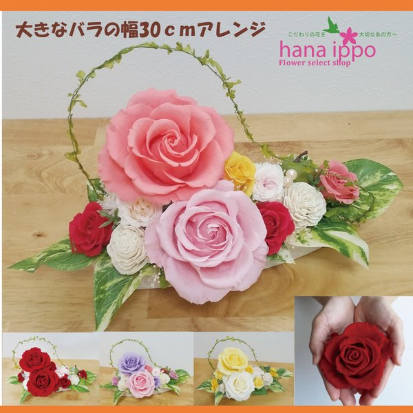 プリザーブドフラワー  敬老の日 送別 大きなバラ幅30センチ 人気の花ギフト|hanaippo
