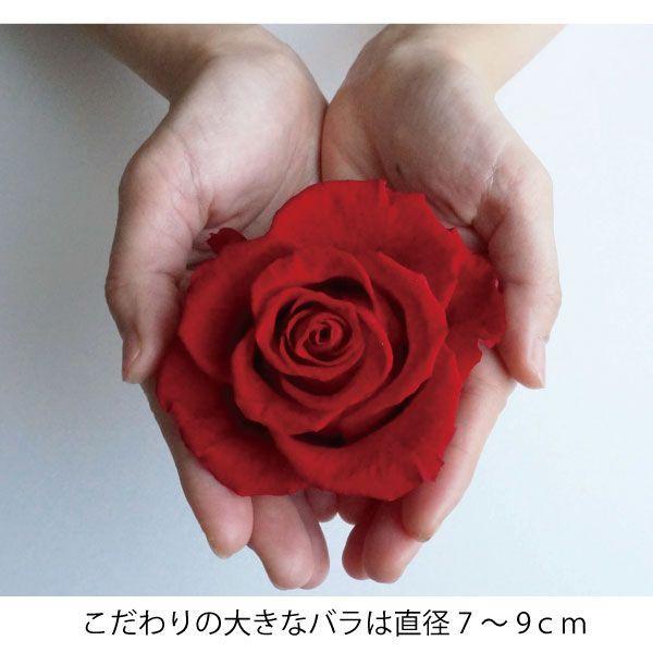 プリザーブドフラワー 誕生日 人気の大きなバラのナチュレ|hanaippo|02