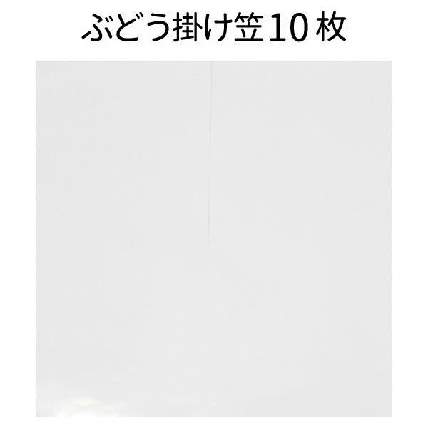 ぶどう笠ポリ乳白 10枚入り <100枚までメール便可> (果実袋) ブドウ 傘