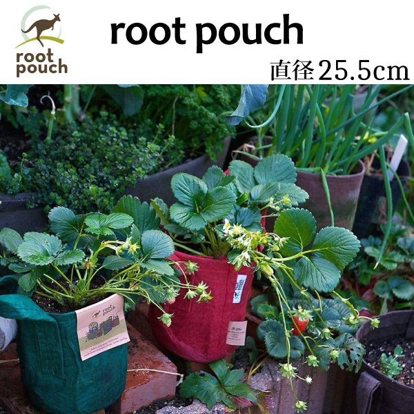 root pouch (ルーツポーチ) 直径25.5cm <宅配便でお届け> 持ち手の付いた不織布ポット 選べる5色 #3 |hanamiki