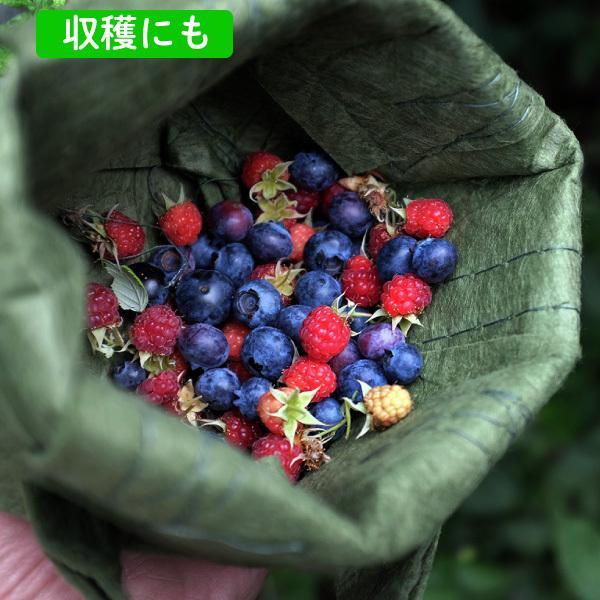 root pouch (ルーツポーチ) 直径25.5cm 【メール便送料無料】 持ち手の付いた不織布ポット 選べる5色 #3 |hanamiki|05