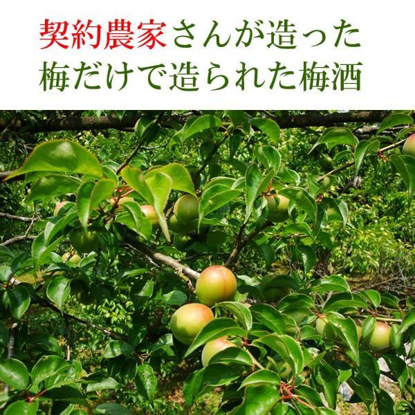 お中元 ランキング ギフト 梅酒 人気:蓬莱泉(ほうらいせん)日本酒でつくった梅酒 契約農家栽培梅使用 720ML|hanatareya|04