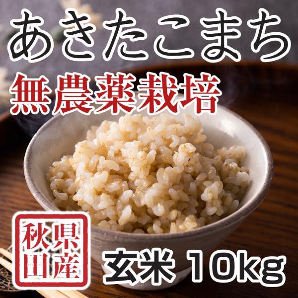 令和2年産米 秋田県産 あきたこまち 無農薬栽培 玄米 10kg 農家直送
