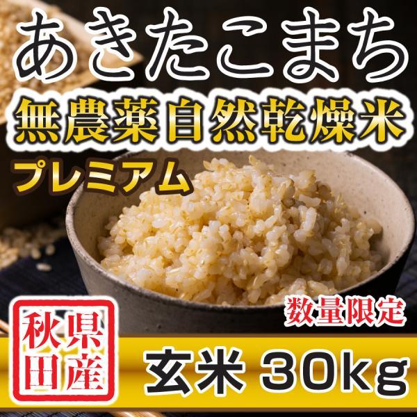 【新米予約】 玄米 令和3年産新米 秋田県産 あきたこまち 無農薬自然乾燥プレミアム 30kg 農家直送