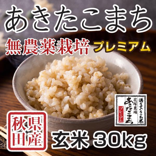 【新米予約】 玄米 令和3年産新米 秋田県産あきたこまち 無農薬栽培プレミアム 30kg 農家直送