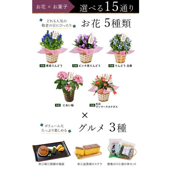遅れてごめんね 敬老の日 花 プレゼント ギフト  敬老の日限定 選べる18撰 リンドウ りんどう 白寿 におい桜 など花&スイーツ4種から選べる贈り物|hanayoshi-y|02