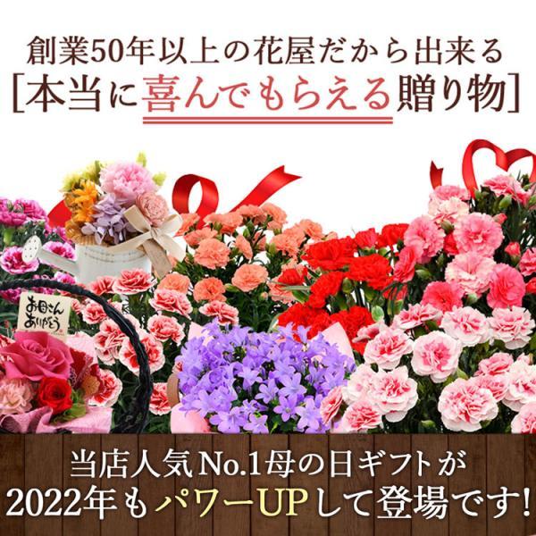 母の日 ギフト 花 プレゼント 2019 組合せ39通り 13種から選べるお花 カーネーション・プリザーブドフラワー ソープフラワー スイーツ セット|hanayoshi-y|03