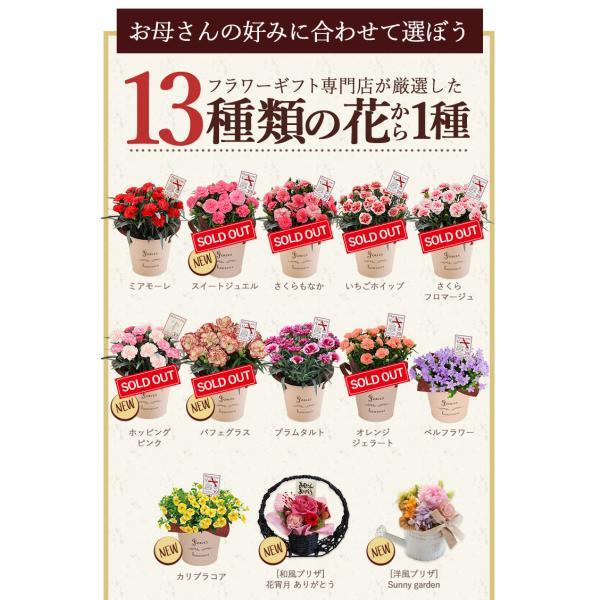 母の日 ギフト 2018 プレゼント 花 送料無料 13種から選べるお花 カーネーション・ラベンダー・プリザーブドフラワー ソープフラワー スイーツ セット|hanayoshi-y|04