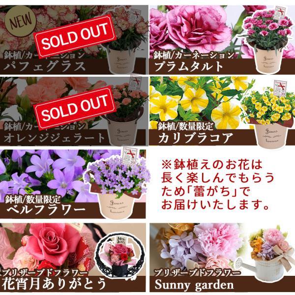 母の日 ギフト 2018 プレゼント 花 送料無料 13種から選べるお花 カーネーション・ラベンダー・プリザーブドフラワー ソープフラワー スイーツ セット|hanayoshi-y|09