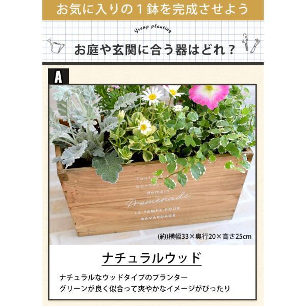 誕生日プレゼント ギフト 新築祝い 引っ越し祝い 贈り物 お祝い 花色とプランターが選べる 季節のおまかせカントリーガーデン 旬のお花をたっぷり hanayoshi-y 05