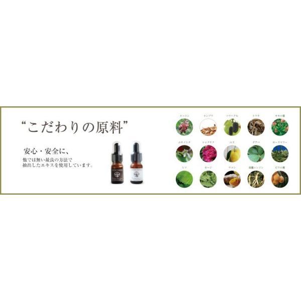 浸透型ヒアルロン酸Naエキス |高級手作り化粧品原料|ハンドメイドピュアエッセンスIV |handmade-skincare|07