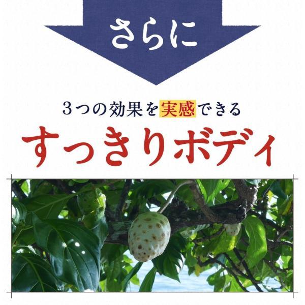 ノニジュース ハンズノニ サモア 半年熟成ノニジュース 900ml|hands|12