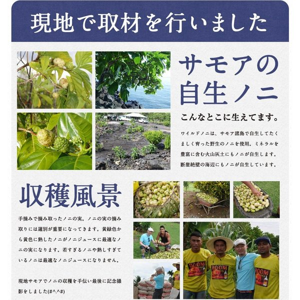 ノニジュース ハンズノニ サモア 半年熟成ノニジュース 900ml|hands|05