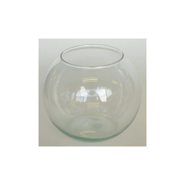 テラリウム鉢水槽ガラス容器/エコガラス金魚鉢テラリウムポットL7492367別通常配送