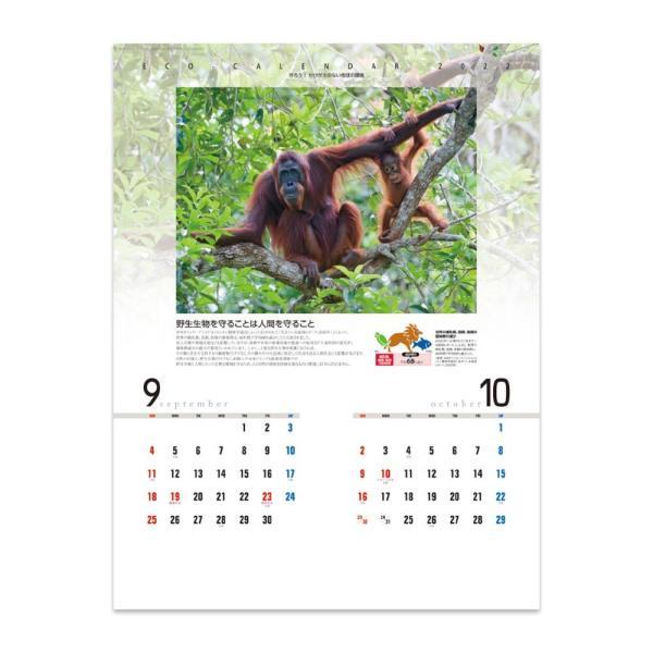 環境カレンダー NK-114 2022年度版 名入れカレンダー 新日本カレンダー