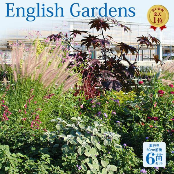 happy-garden_ne-fmn08eng6p