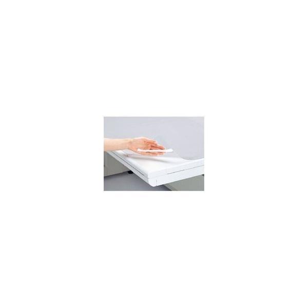 (業務用2セット) プラス 塩ビデスクマット/卓上マット 〔シングル/1190mm×690mm〕 DM-127
