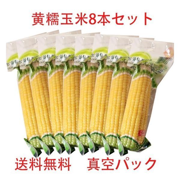 黄糯玉米(1本入) 【8本セット】黄もちとうもろこし真空パック  調理済み 温めるだけ  即席トウモロコシ250g×8  送料無料(北海道、沖縄除く))