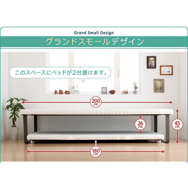二段ベッド 2段ベッド 親子ベッド ツインベッド ベーネ&チック 薄型・抗菌日本製 ポケットコイルマットレス付き 上下段セット シングル スライド収納|harda-kagu|05